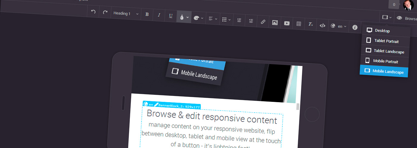 Browse and edit responsive web content